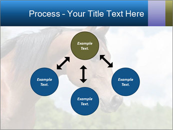 Horse mare PowerPoint Templates - Slide 91