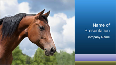 Horse mare PowerPoint Template