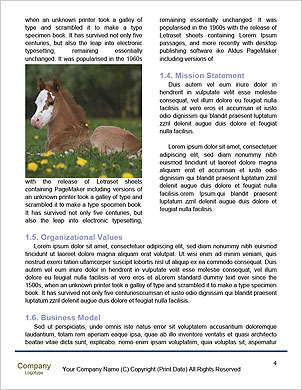 0000094346 Word Template - Page 4