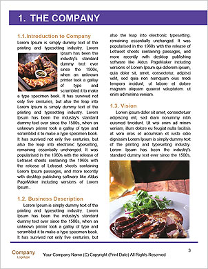 0000094355 Word Template - Page 3