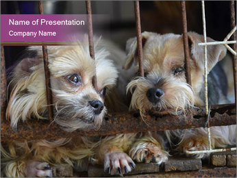 Dog PowerPoint Templates - Slide 1