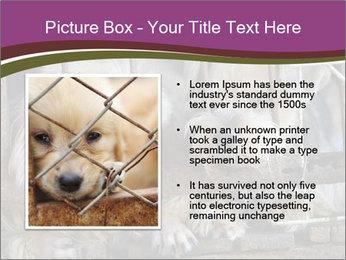 Dog PowerPoint Templates - Slide 13
