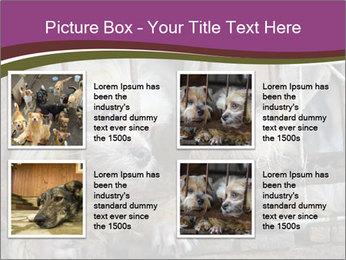 Dog PowerPoint Templates - Slide 14