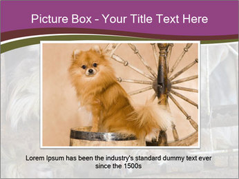Dog PowerPoint Templates - Slide 15