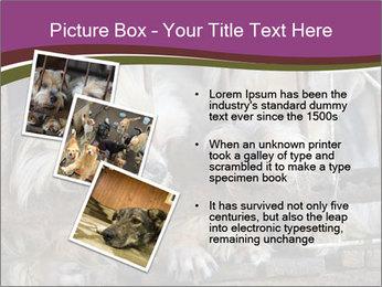 Dog PowerPoint Templates - Slide 17