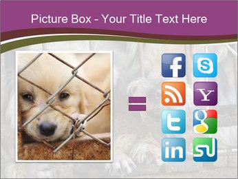 Dog PowerPoint Templates - Slide 21