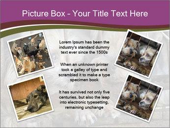 Dog PowerPoint Templates - Slide 24