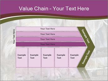 Dog PowerPoint Templates - Slide 27