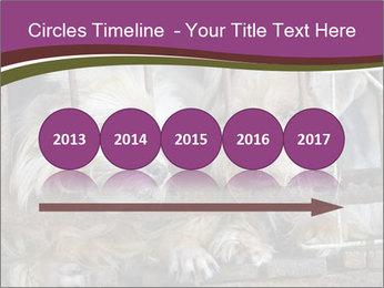 Dog PowerPoint Templates - Slide 29