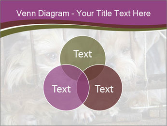 Dog PowerPoint Templates - Slide 33