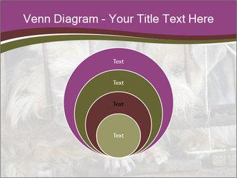Dog PowerPoint Templates - Slide 34