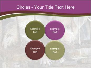 Dog PowerPoint Templates - Slide 38