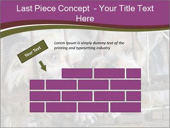 Dog PowerPoint Templates - Slide 46
