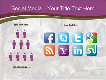 Dog PowerPoint Templates - Slide 5