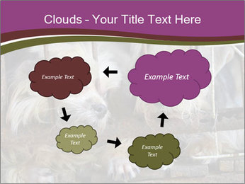 Dog PowerPoint Templates - Slide 72