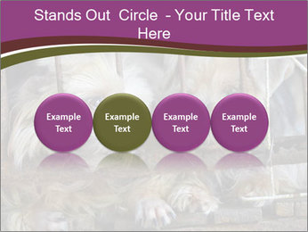 Dog PowerPoint Templates - Slide 76