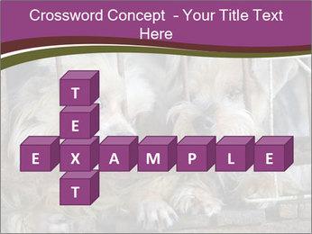 Dog PowerPoint Templates - Slide 82