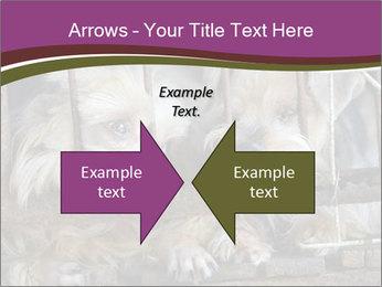 Dog PowerPoint Templates - Slide 90