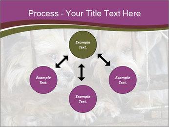 Dog PowerPoint Templates - Slide 91