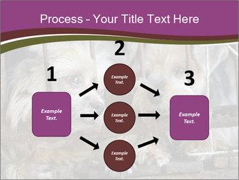 Dog PowerPoint Templates - Slide 92