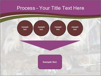 Dog PowerPoint Templates - Slide 93