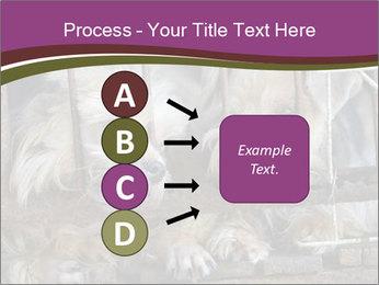 Dog PowerPoint Templates - Slide 94