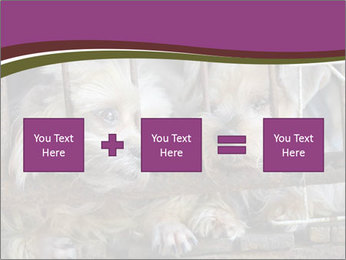 Dog PowerPoint Templates - Slide 95
