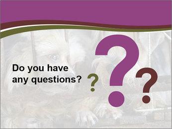 Dog PowerPoint Templates - Slide 96
