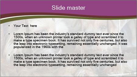 Dog PowerPoint Template - Slide 2