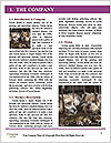 0000094361 Word Templates - Page 3