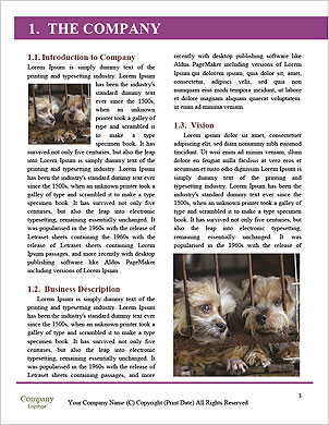0000094361 Word Template - Page 3