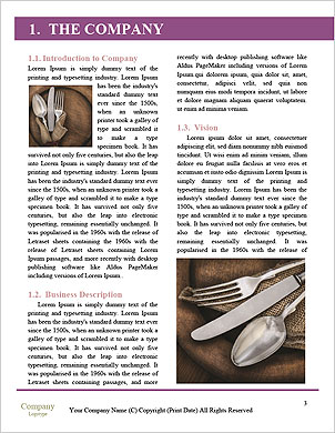 0000094362 Word Template - Page 3