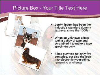 French bulldog puppy PowerPoint Templates - Slide 17