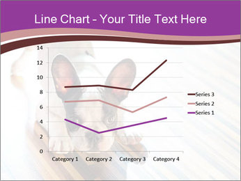 French bulldog puppy PowerPoint Templates - Slide 54