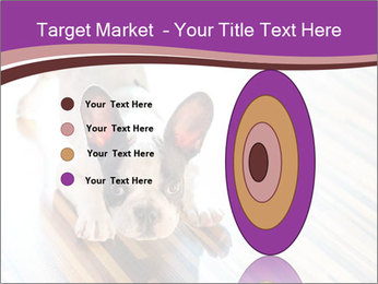 French bulldog puppy PowerPoint Templates - Slide 84