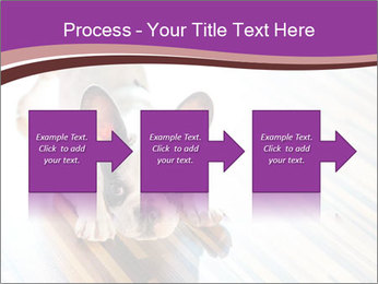 French bulldog puppy PowerPoint Templates - Slide 88
