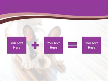 French bulldog puppy PowerPoint Templates - Slide 95