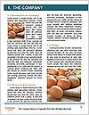 0000094373 Word Template - Page 3