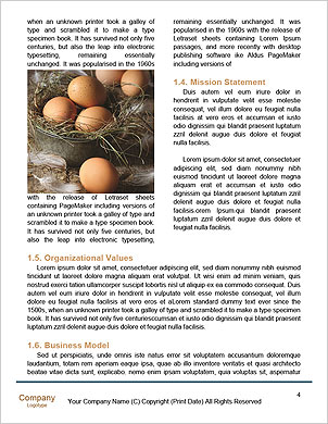 0000094373 Word Template - Page 4