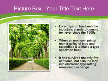 Alley Park PowerPoint Template - Slide 13