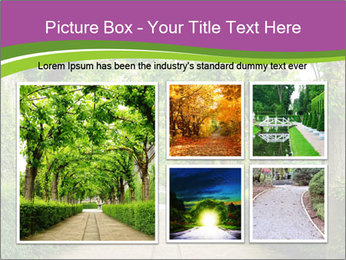 Alley Park PowerPoint Template - Slide 19