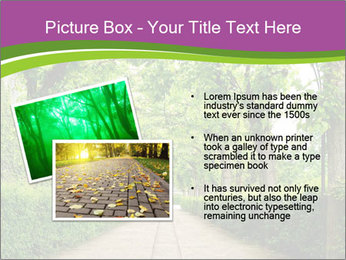 Alley Park PowerPoint Template - Slide 20