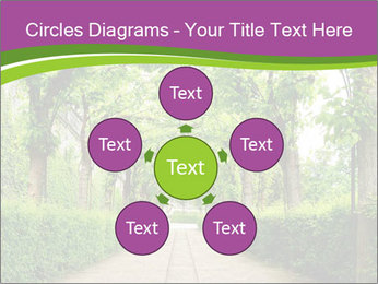Alley Park PowerPoint Templates - Slide 78