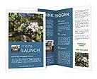 0000094375 Brochure Templates
