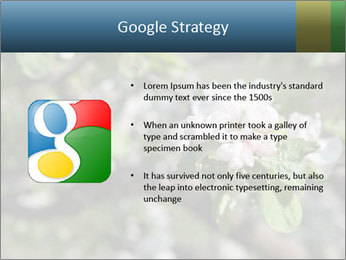 Western part of Norway PowerPoint Templates - Slide 10