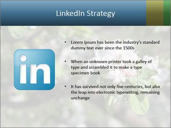 Western part of Norway PowerPoint Templates - Slide 12