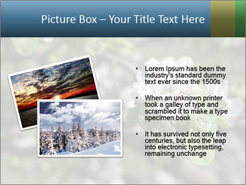 Western part of Norway PowerPoint Templates - Slide 20