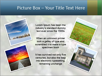 Western part of Norway PowerPoint Templates - Slide 24