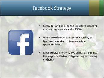 Western part of Norway PowerPoint Templates - Slide 6