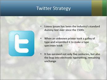 Western part of Norway PowerPoint Templates - Slide 9